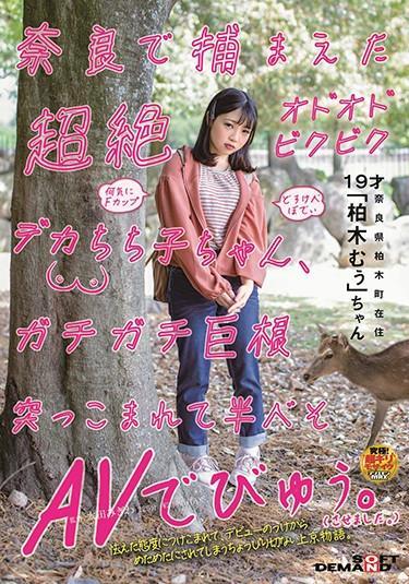 |SDMU-952| 這是超級多多維克比格卡cachiko-chan誰捕獲在奈良被推入大,是半貝索AV。 (我是. 住在奈良縣Kashiwagi-cho 制服 巨乳 青春的 特色女演员